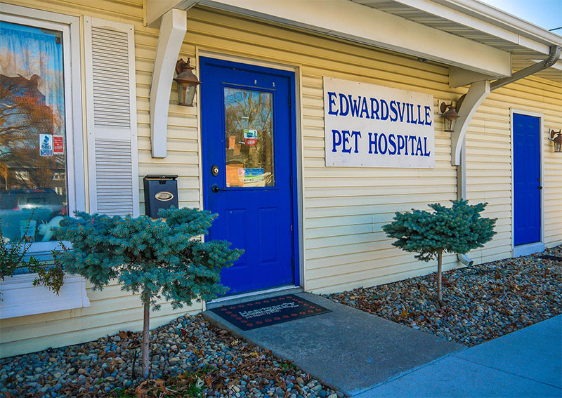 Edwardsville Veterinary Hospital